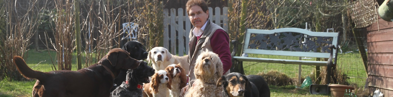 Paul James Marshall B.Ed. Dog Behaviourist and Trainer on The Isle of Wight