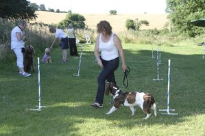 Paul James Marshall. Isle of Wight Dog Behaviourist and Trainer