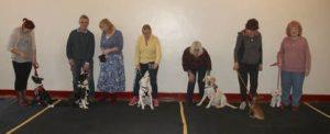 Paul James Marshall. Isle of Wight Dog Behaviourist and Trainer